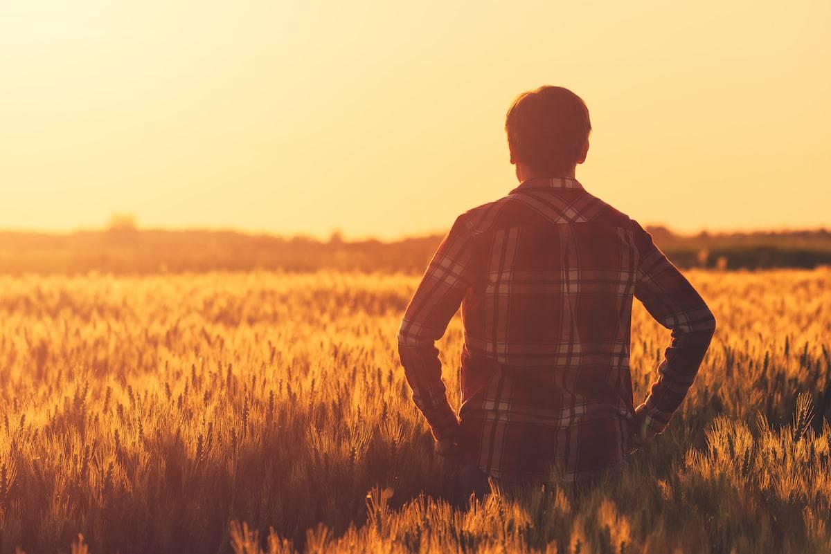 Alberta Immigration Self-Employed Farmer Stream