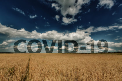 COVID-19: Agriculture Employers to get $1,500 for Each Self-Isolating Temporary Worker