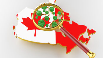 What to do if Your Ontario Immigration Application is Affected by Coronavirus