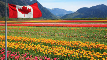 Canada Opens Applications For New Agri-Food Immigration Pilot
